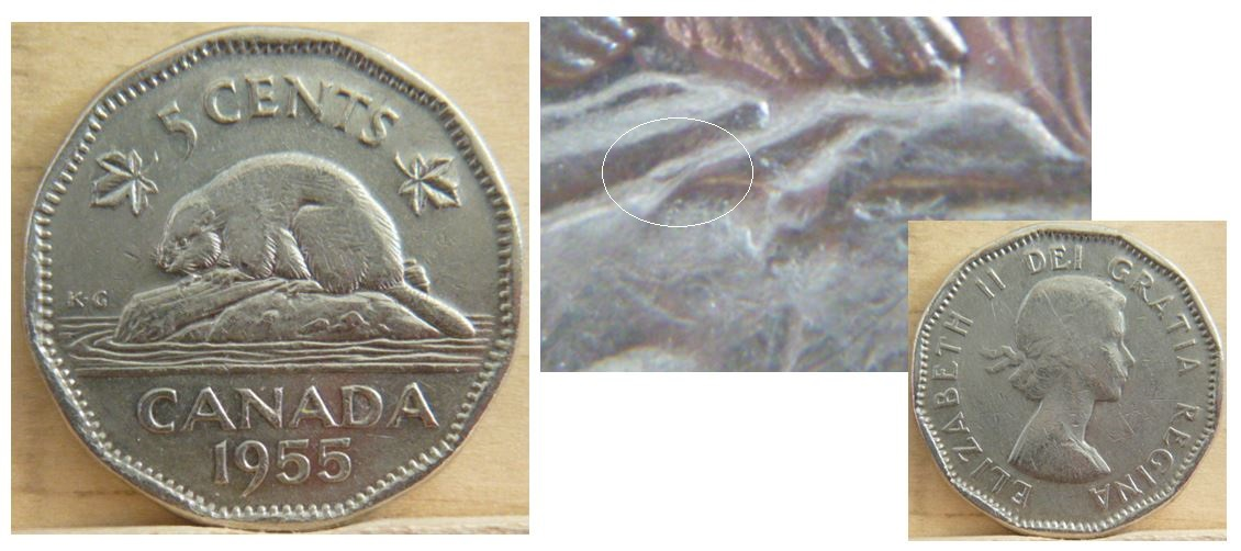 Coins And Canada 5 Cents 1955 Canadian Coins Price Guide And Values